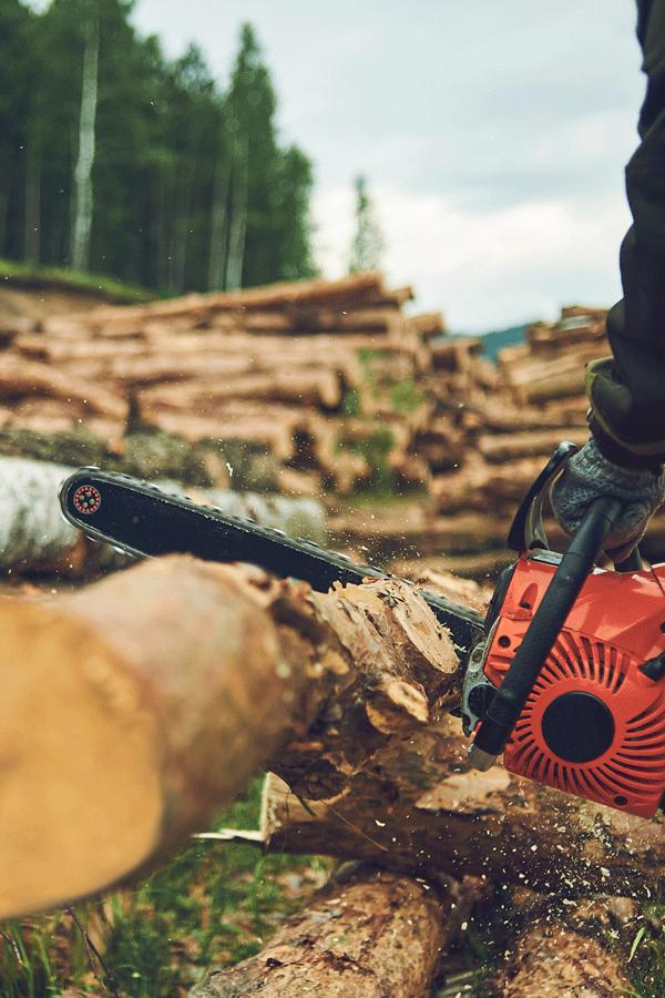 Forsttechnik Rankweil